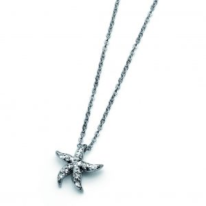 ستاره دریایی11185